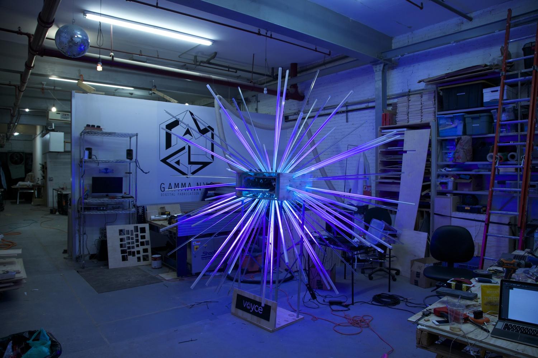 Barkbox - Lighting Test 4